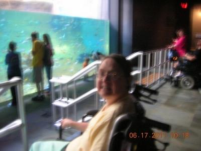 day_trips_6_20120509_1404754885.jpg